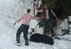Father and Son Kill Hibernating Bear and Her Cubs