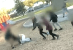 Woman Attacked by Children at Playground