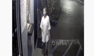 ID #20-410 Alleged Attempted Kidnapping Suspect