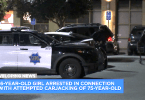 Elderly Woman Brutally Carjacked by Teens Caught on Camera