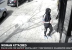 ID #21-130 NYPD Searching For In Horrific Slashing Of Woman Inside Bronx Store