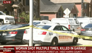 Woman Shot at Nearly 50 Times, Killed While Pulling into Her Garage