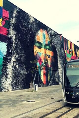 Mural Etnias, Eduardo Kobra