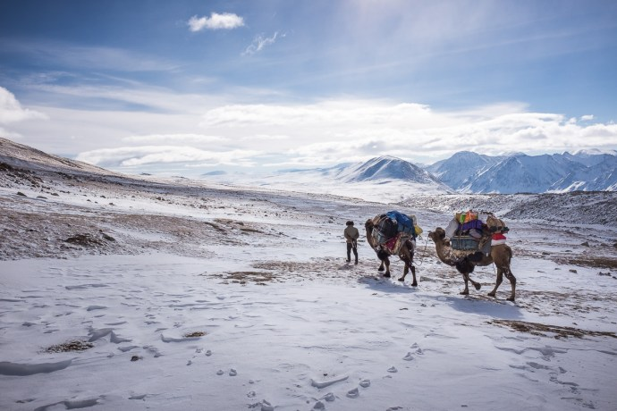 Both camels are loaded with cargo and leaving the base camp. They are taking it to lover elevation approachable by car. They seem to walk slow but they got far ahead of me as I was always gazing and the incredible surroundings.