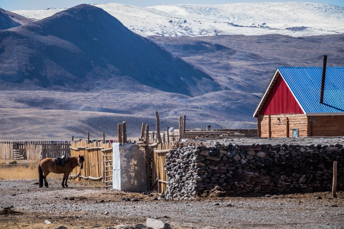This is Mongolia. At one of the settlements we passed during our drive back to Olgii I saw this scene. This perfectly represents Mongolia and it's dependance on horses.