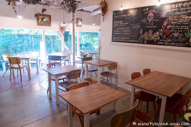 fn213 cafe tonerico 2016  003
