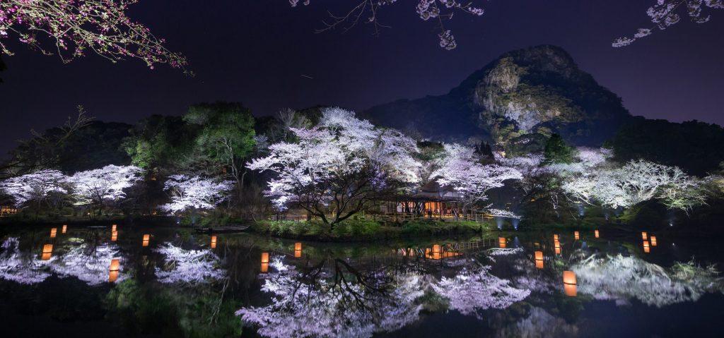 Image result for Mifuneyama Rakuen sakura