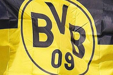 bvb 10
