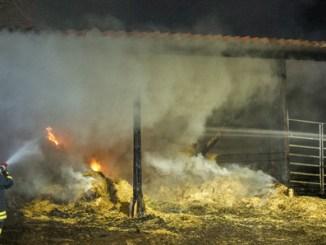 brand schotten01