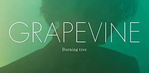 グレープバイン (GRAPEVINE) 移籍後、初のアルバム「Burning tree」が発売!