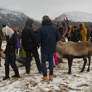 Cairngorm Reindeer Centre, Scotland in Winter, Scotland Travel Tips