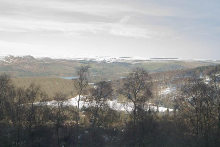 Birnham Hill, Perthshire, Scotland Travel Blog