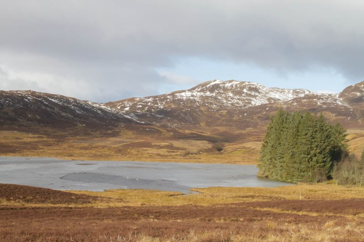 Highland Safaris, Perthshire, Get off the A9, Travel Guide to Scotland