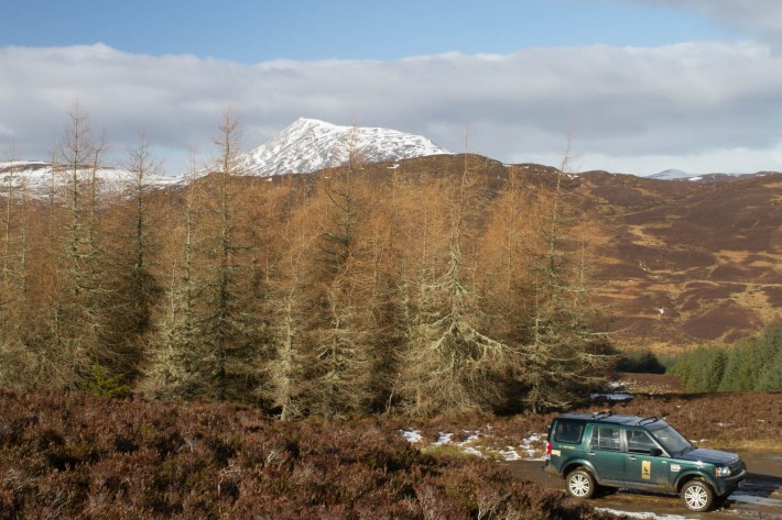 Highland Safaris, Perthshire. Land Rover on a track with mountains in the background