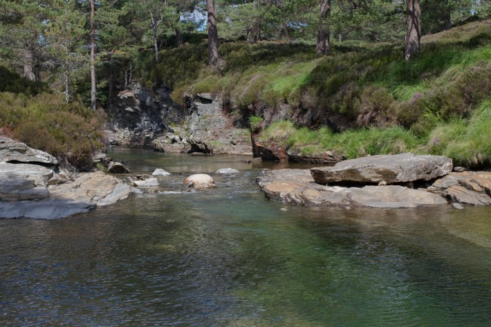 Lui Water, Mar Lodge Estate, Scotland. Clear river water with high river banks and trees
