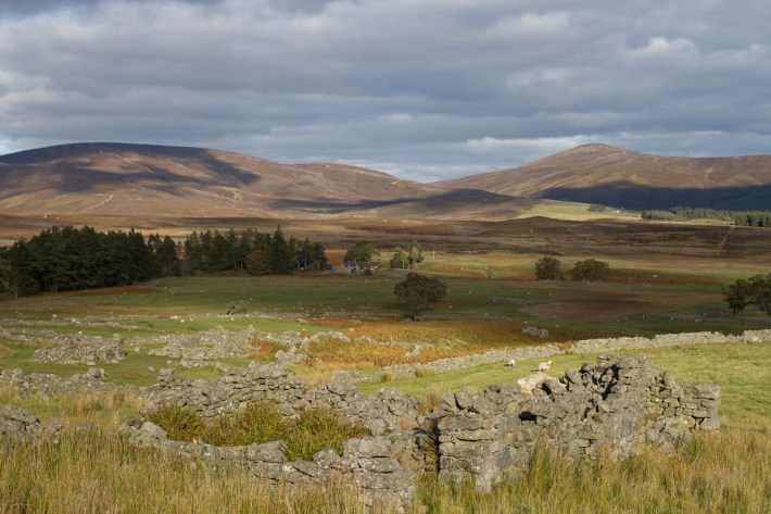 Arsallary township, Glen Esk, Angus Glens. Low wall ruins of the old township with hills in the background