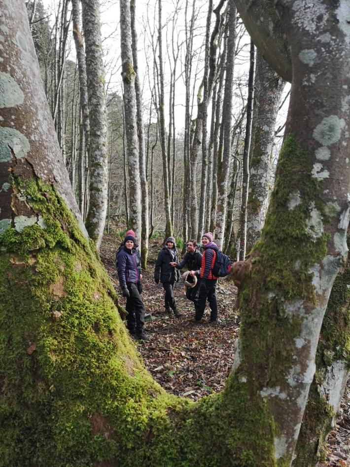Wee adventures group in Weem Forest
