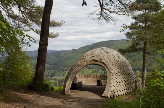 Pinecone Point, Perthshire in the woodlands