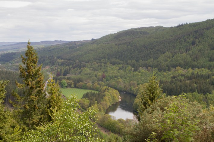 Pinecone Point, Perthshire