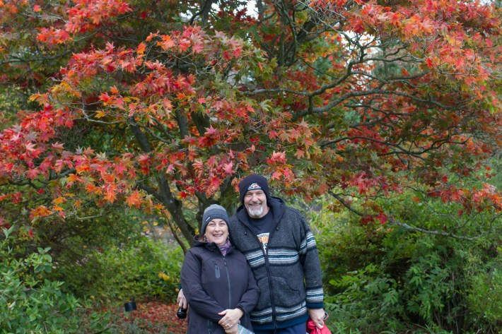 Falkland Palace Gardens in autumn