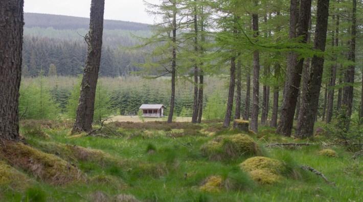 Clashindarroch Forest, cabin view. Aberdeenshire