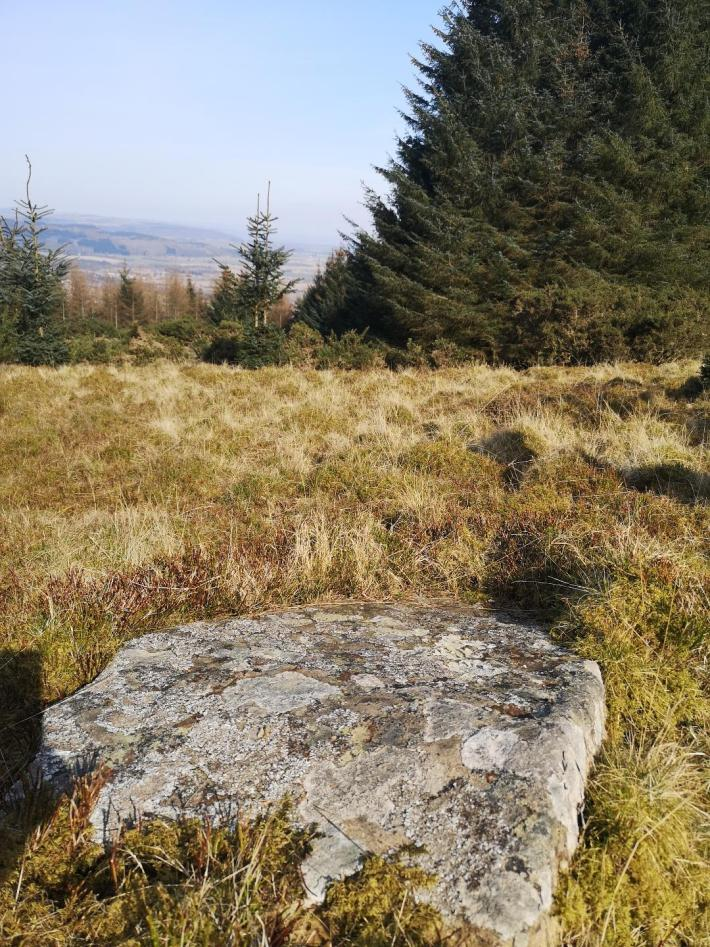 Cup marked stone in Perthshire - little walks from home during lockdown