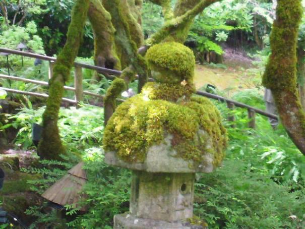 Mossy Japanese Lantern