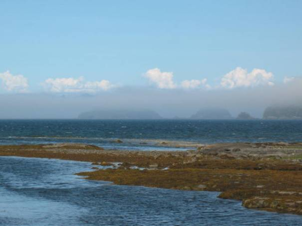 Ghostly islands in the fog.