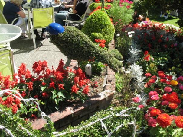 Seal topiary.