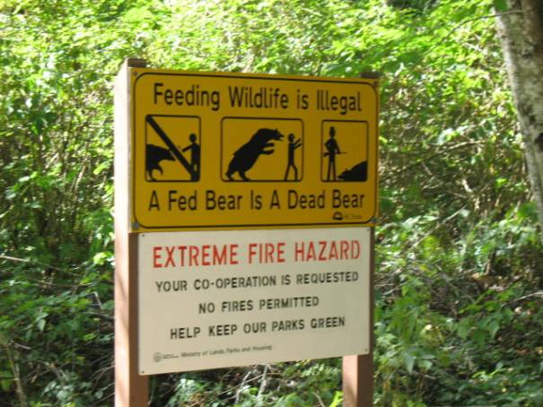 Bear sign.  If the bears come after people they are killed.