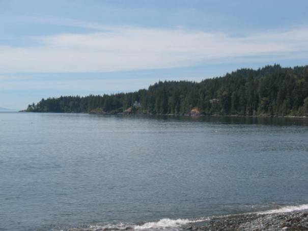 Typical shoreline, forests growing right down to the water's edge.