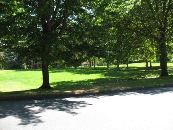 Very park like.
