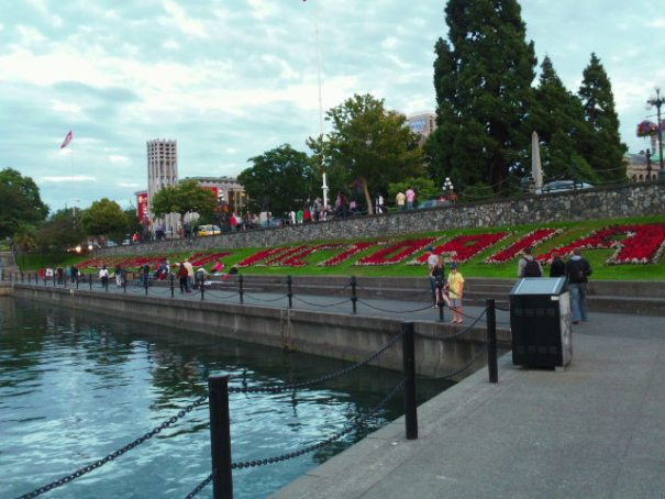Welcome to Victoria in flowers, Edie's penchant.