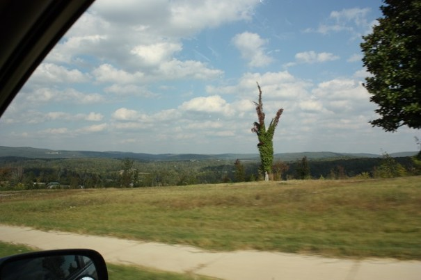 Rare vistas in the south.  Mostly we are deep in trees.