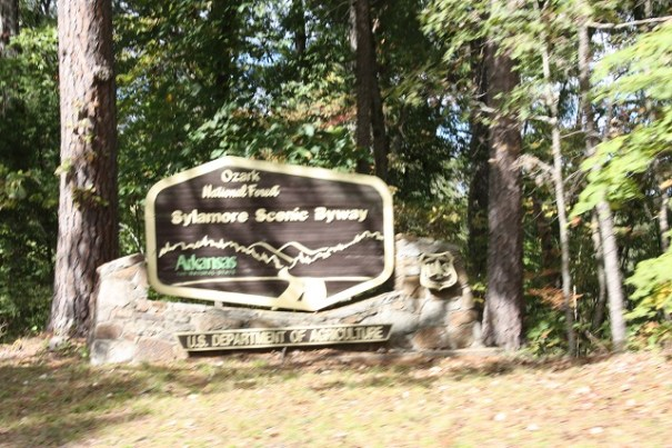 Ozark National Forest sign.