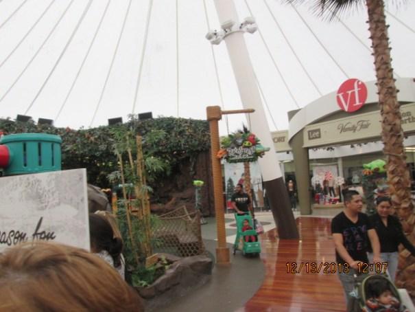 Rain Forrest next to Vanity Fair.