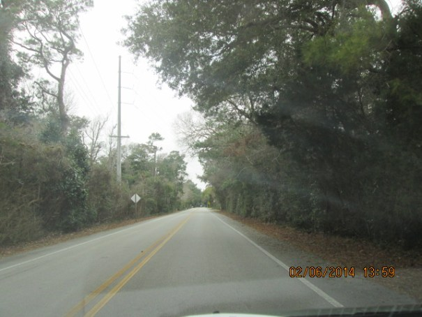 Road down the island.