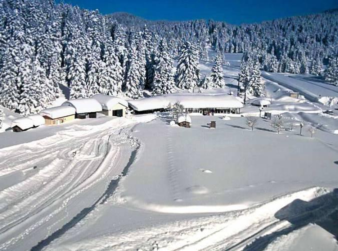 Χειμερινοί-προορισμοί-Τρικάλων-Χιονοδρομικό-Κέντρο-Περτούλι-rest35_0.jpg