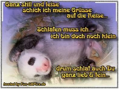 Gute Nacht Spruche Pinnwand Bilder Grusse Grusskarten Versenden