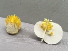 金馬賓館・當代美術館(ALIEN ART CENTRE) 黄色い物体