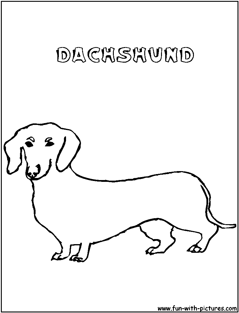 dachshund coloring page png