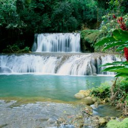 YS Falls & Appleton Rum Factory Combo Tour Package