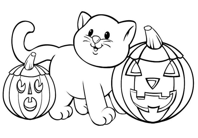 Cat With Pumpkin Coloring Pages