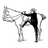 """Getting """"Back on Your Horse"""" After a Layoff"""