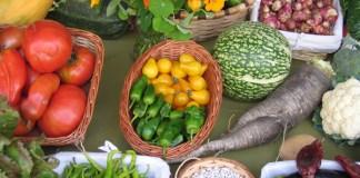 Productos recogidos en los huertos colectivos de las Huertas del Anillo Verde | FOTO: Blog de huertos urbanos de Vitoria Gasteiz