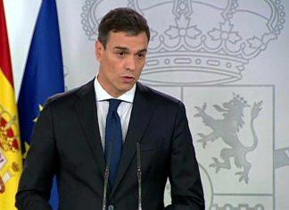 Sánchez, el inane