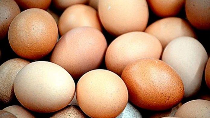 Pisando huevos