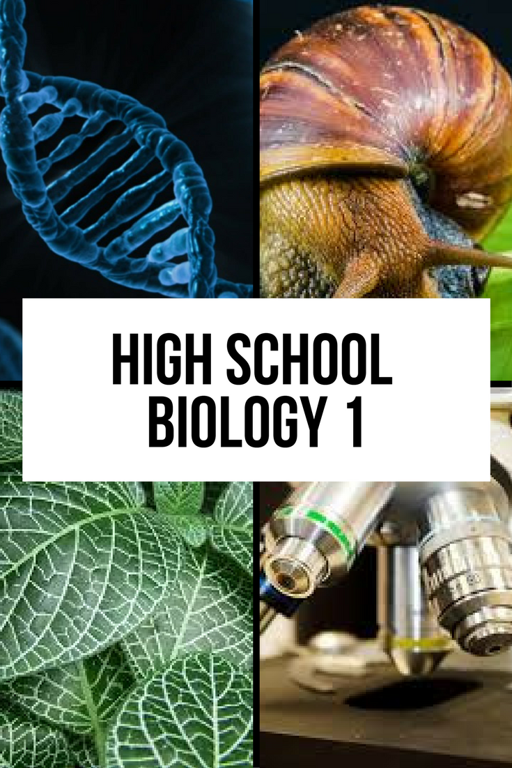 online biology courses Discover free online marine biology courses from top universities thousands of reviews written by class central users help you pick the best course.