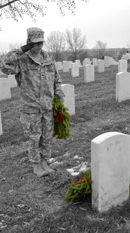 Salute to Our Fallen Heroes-Amber Knickman