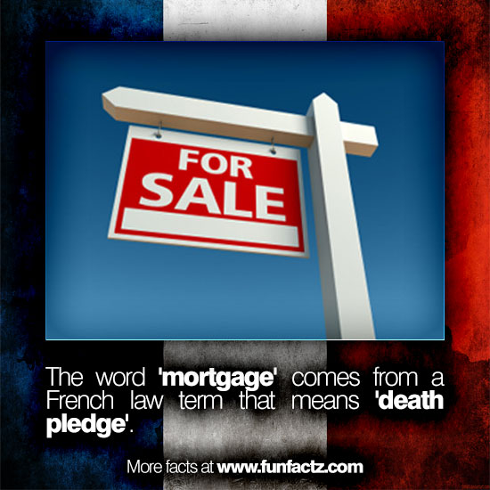 ... word '<b>mortgage</b>' comes from a French law term that means '<b>death</b> ple